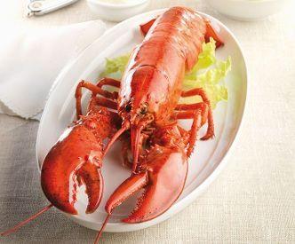 Cocer el marisco - Bogavante